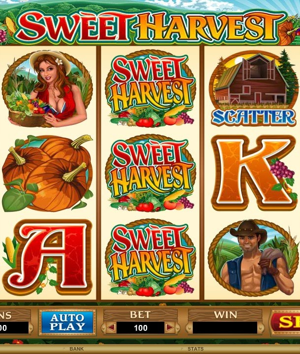 online casino tricks wild west spiele